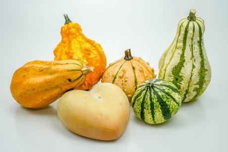 pumpkin-3677222_640