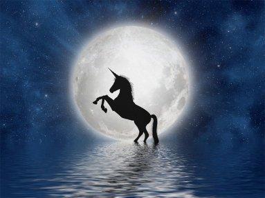 unicorn-3909694_640
